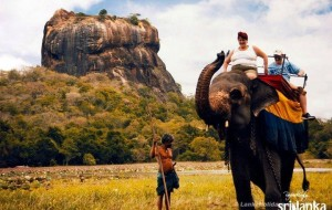 sri lanka (Why you should Travel to Sri Lanka)
