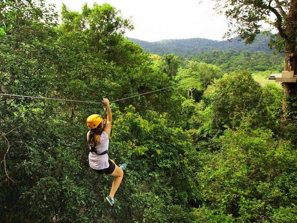Ziplining - Flight of Gibbons, Chiang Mai, Thailand