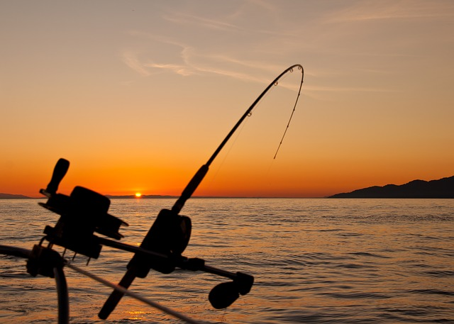 How to start a fishing charter business
